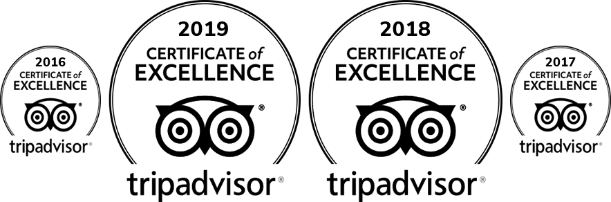 trip-advisor-certificate-of-excellence-white-png